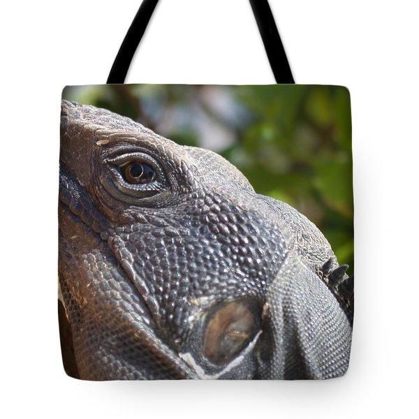 Iguana Closeup Tote Bag