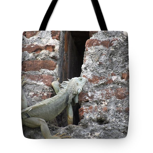 Tote Bag featuring the photograph Iguana by David S Reynolds