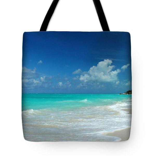 Iguana Island Caribbean Tote Bag