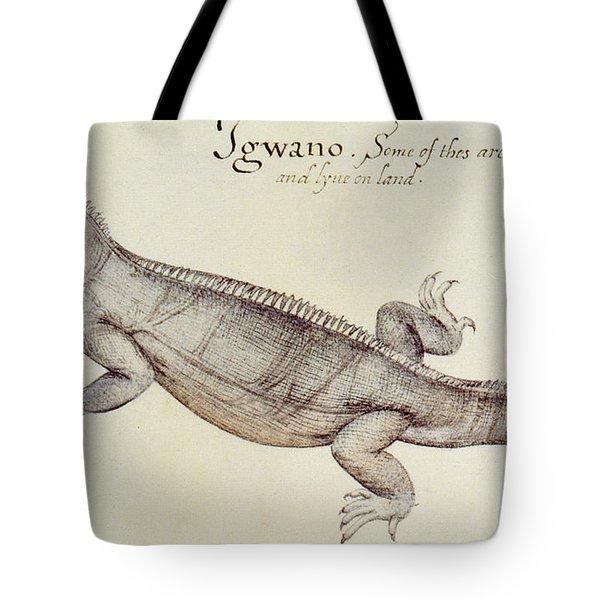 Iguana Tote Bag by John White