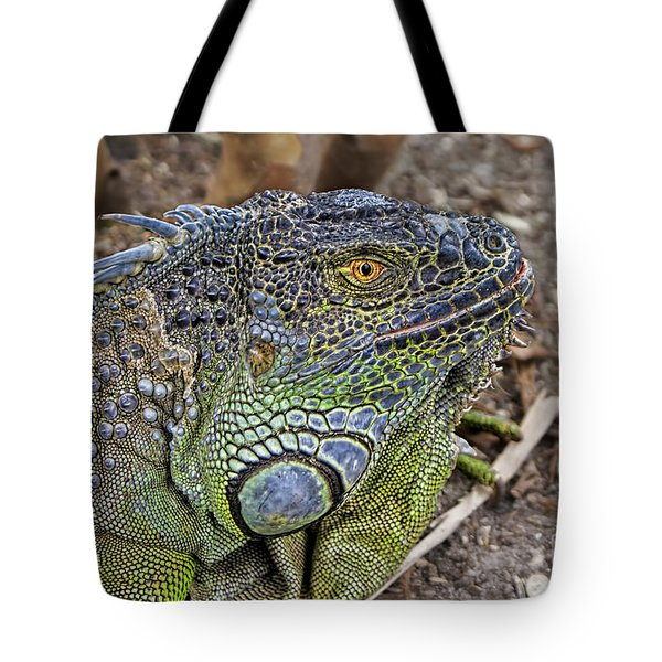 Tote Bag featuring the photograph Iguana by Olga Hamilton