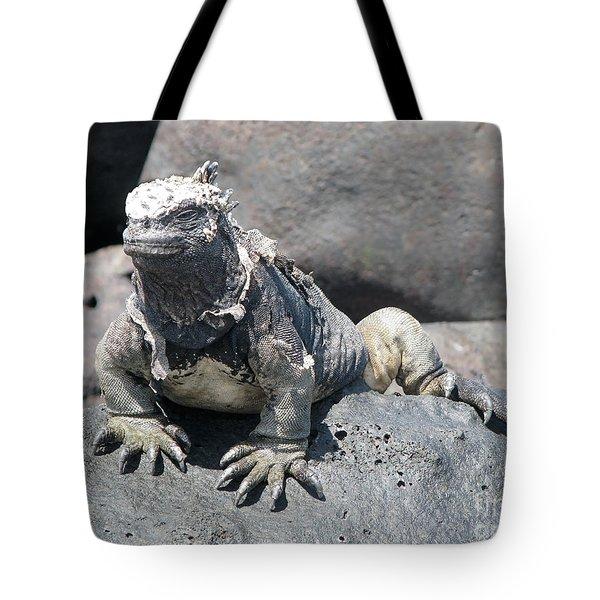Iguana Or Prehistory Survivor Tote Bag