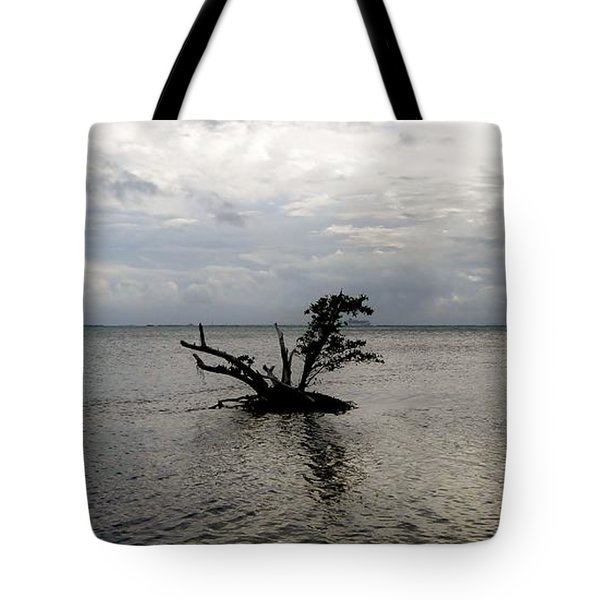 Ikebana Sunset Tote Bag