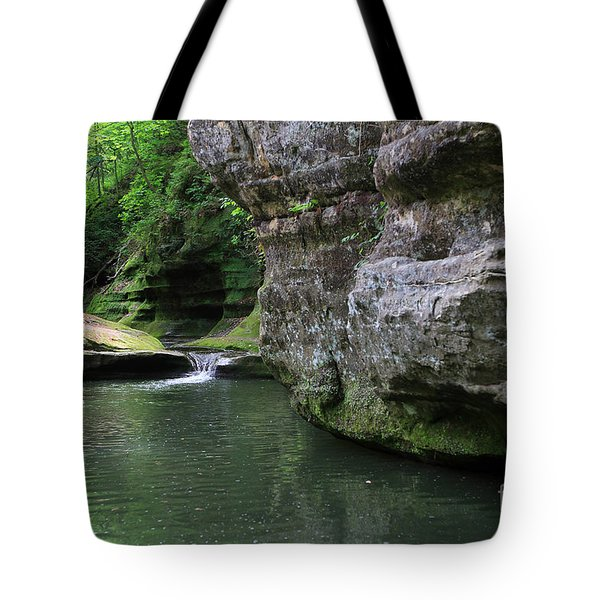 Illinois Canyon May 2014 Tote Bag