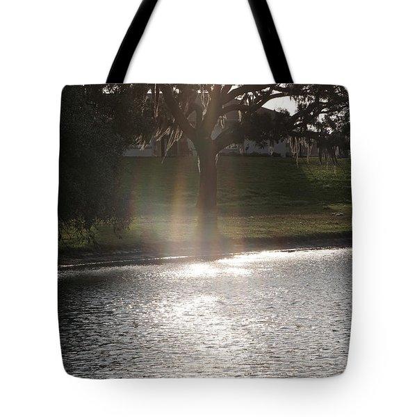 Illuminated Tree Tote Bag