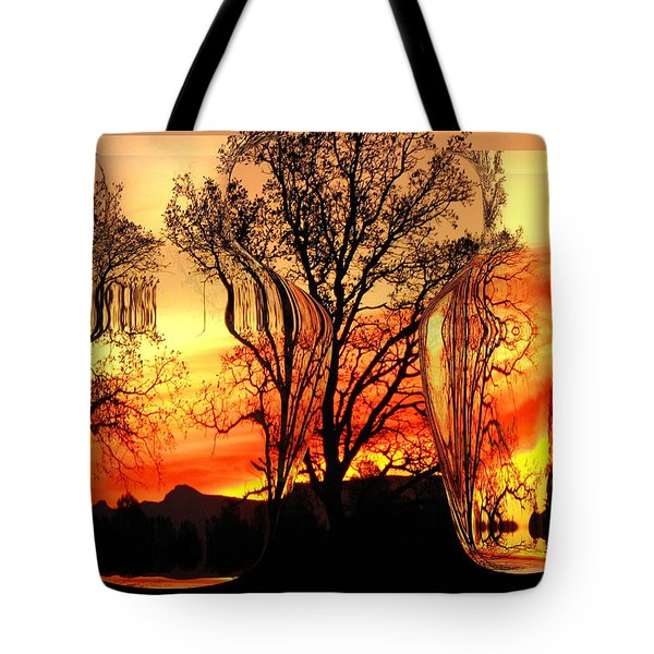 Tote Bag featuring the photograph Illusion by Joyce Dickens
