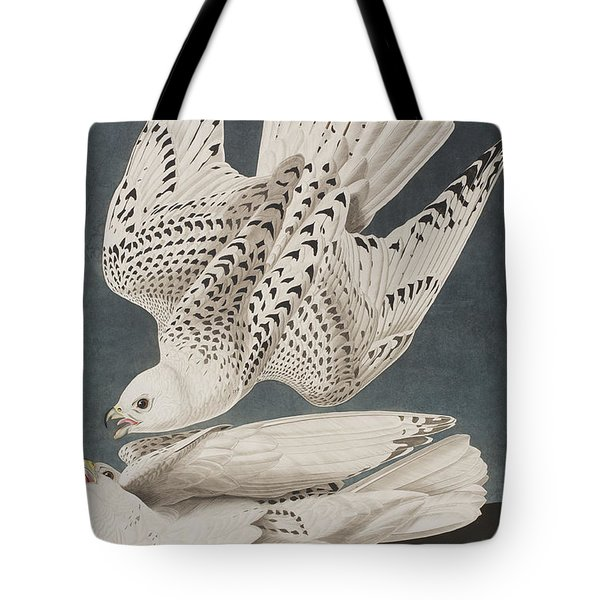 Illustration From Birds Of America Tote Bag