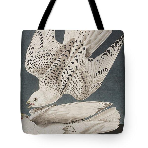 Illustration From Birds Of America Tote Bag by John James Audubon