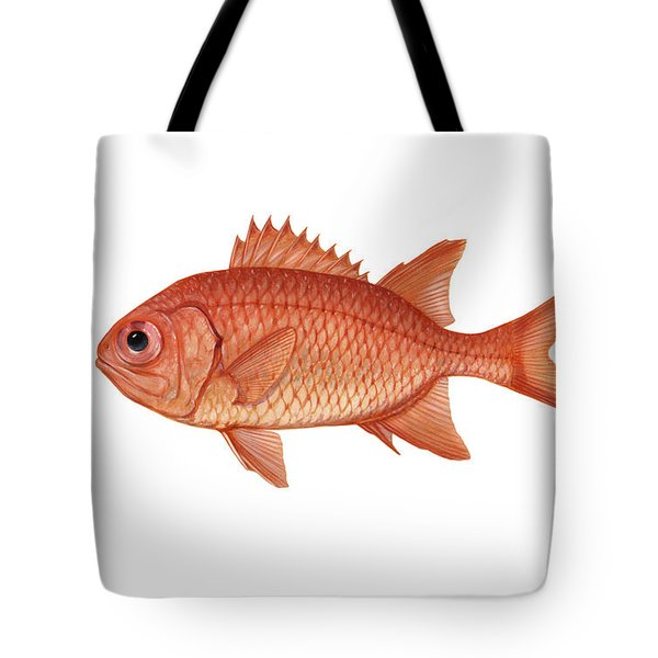 Illustration Of A Brick Soldierfish Tote Bag by Carlyn Iverson