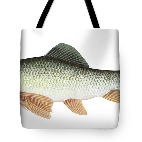 Illustration Of A Silver Redhorse Tote Bag by Carlyn Iverson