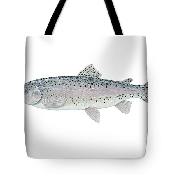 Illustration Of A Steelhead Trout Tote Bag by Carlyn Iverson