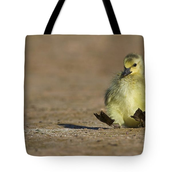 Tote Bag featuring the photograph I'm Falling by Bryan Keil