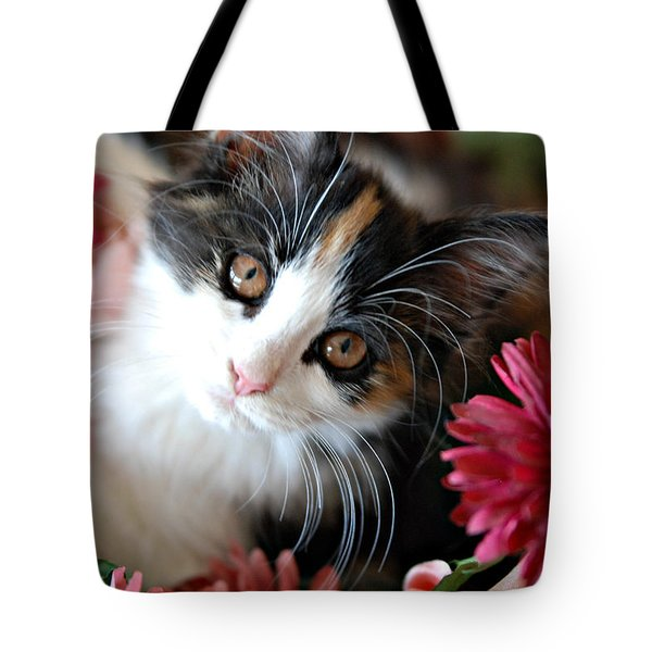 Tote Bag featuring the photograph I'm Just So Adorable by Kenny Francis