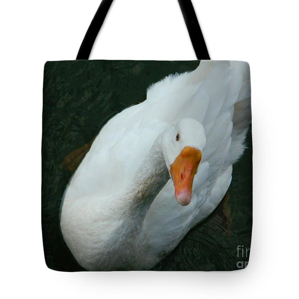 Tote Bag featuring the photograph I'm Lookin' At You by Emmy Marie Vickers