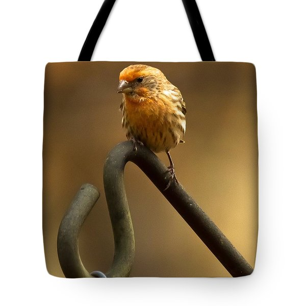 I'm Orange Tote Bag