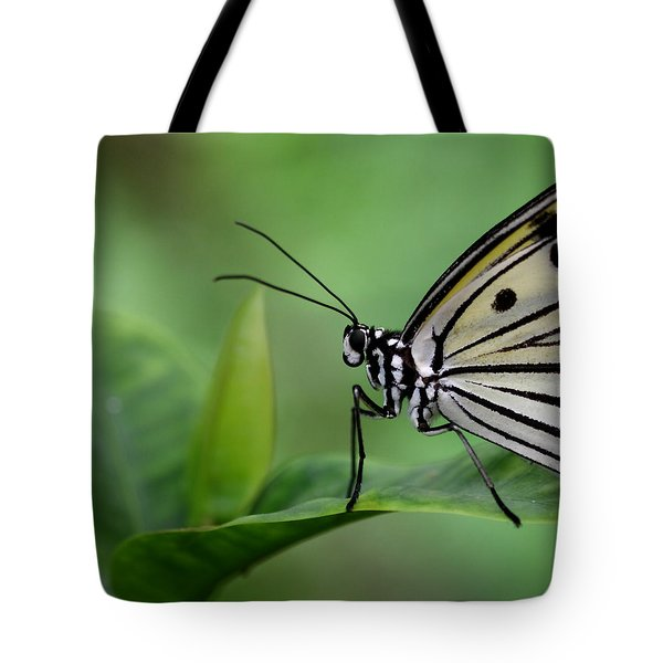 Tote Bag featuring the photograph I'm Ready For My Close-up by Ruth Jolly