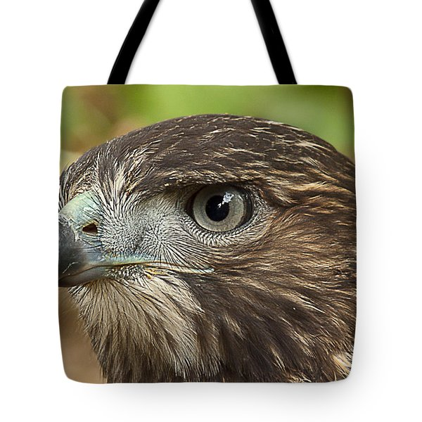 I'm Watching You Tote Bag by Randy Hall