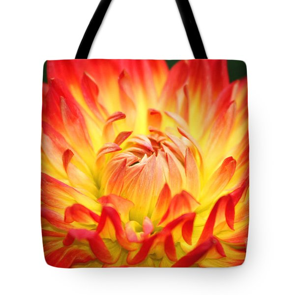 Img 0023 Flor En Rojo Detalle Tote Bag