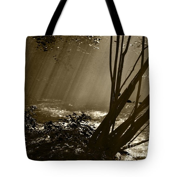 Imminent Apparition Tote Bag by Simona Ghidini