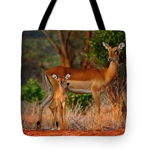 Impala And Young Tote Bag by Amanda Stadther