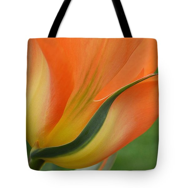 Imperfect Beauty Tote Bag by Felicia Tica