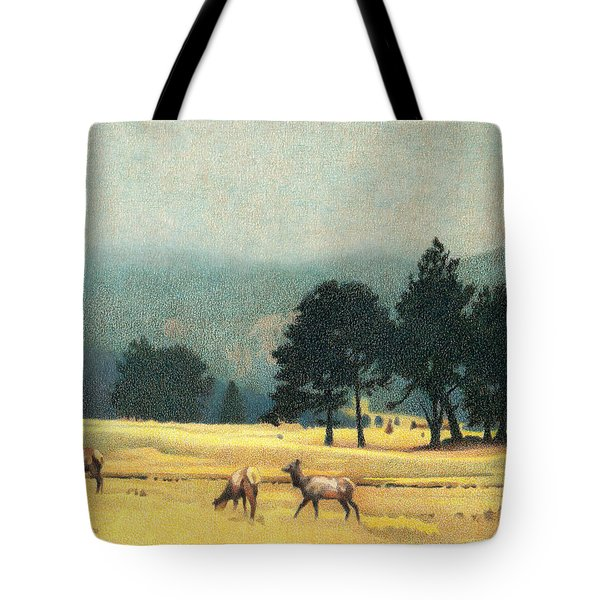 Impression Evergreen Colorado Tote Bag
