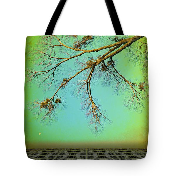 In A Land Far Far Away Tote Bag by Jan Amiss Photography