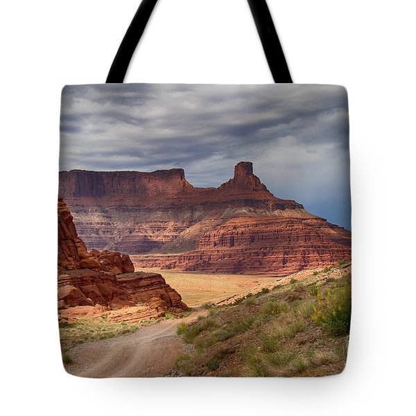 Tote Bag featuring the photograph In Canyonlands Np by Juergen Klust