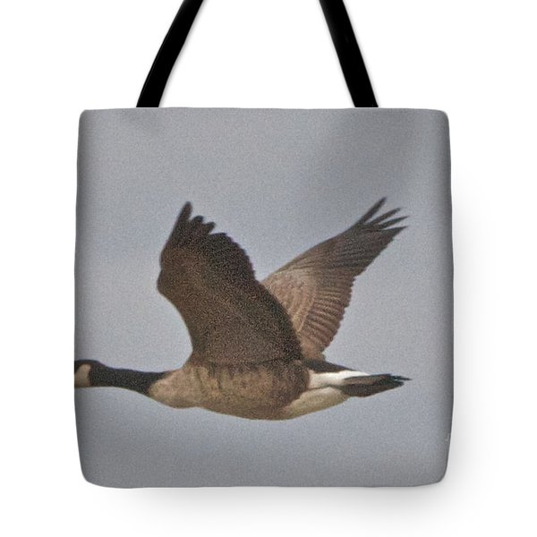 In Flight Tote Bag by William Norton