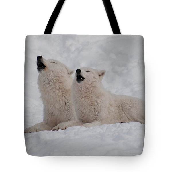 Tote Bag featuring the photograph In Harmony by Bianca Nadeau
