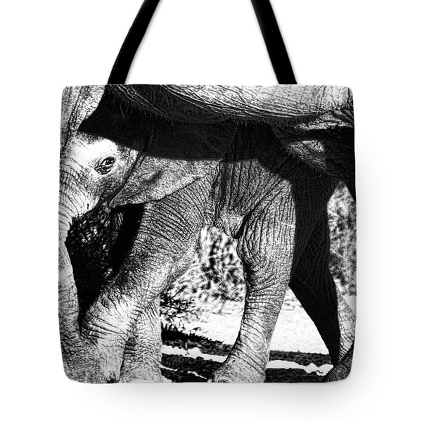 In Mother's Shadow Tote Bag by Douglas Barnard