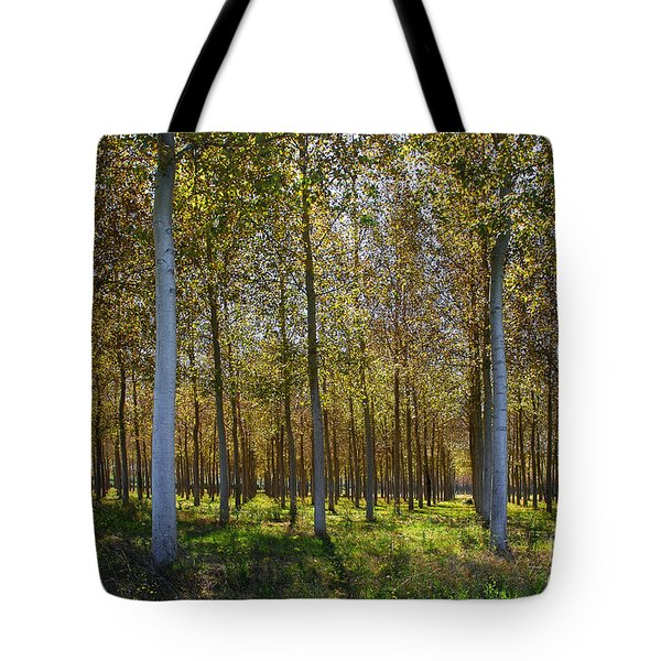 In Rank And File  Tote Bag by Hannes Cmarits