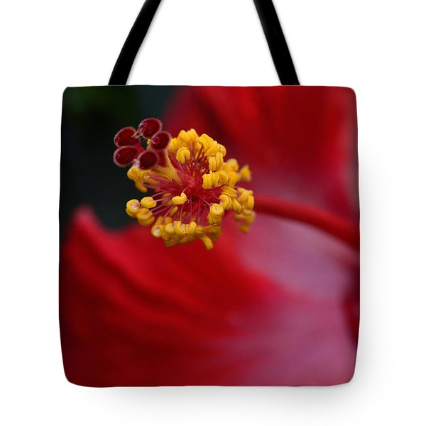 In Red Tote Bag by Larry Bishop