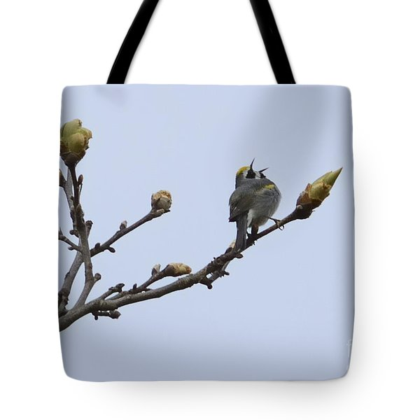 In Song Tote Bag by Randy Bodkins