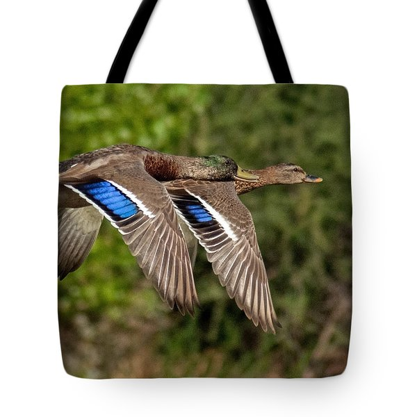 In Tandem Tote Bag by Tam Ryan