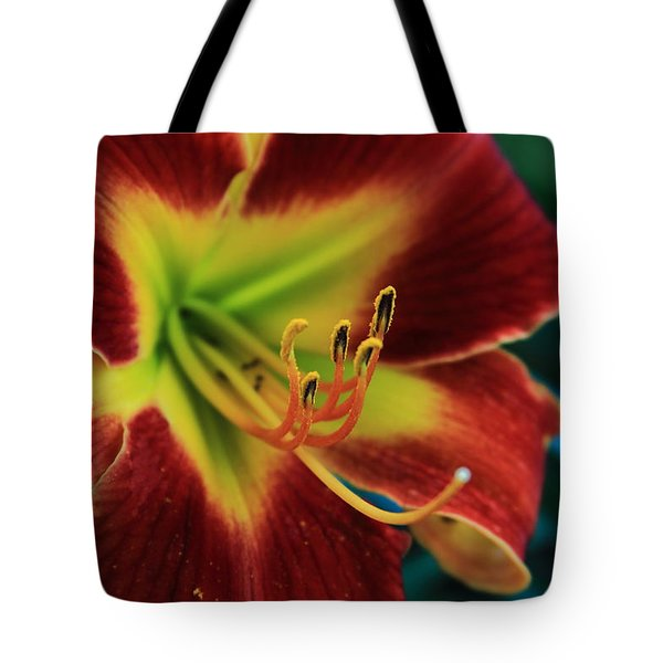 In The Ant's Eye Tote Bag by Reid Callaway