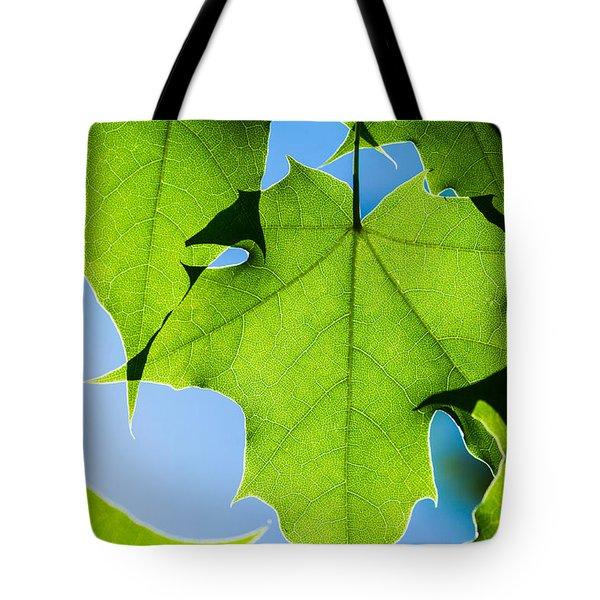 In The Cooling Shade - Featured 3 Tote Bag by Alexander Senin
