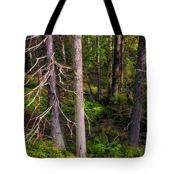 In The Depth Of Northern Forest Tote Bag by Jenny Rainbow