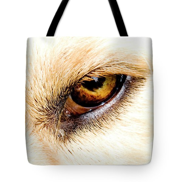 Tote Bag featuring the photograph In The Eyes.... by Rod Wiens