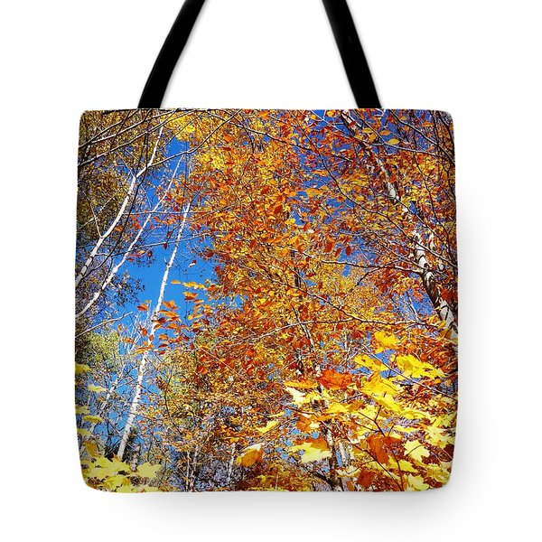 In The Forest At Fall Tote Bag