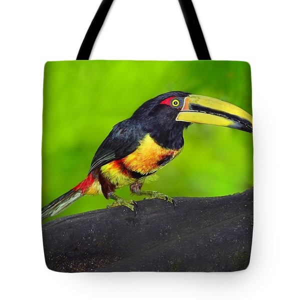 In The Forest Tote Bag by Tony Beck