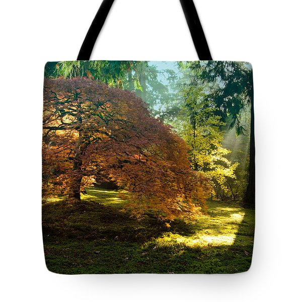 In The Gentle Autumn Light Tote Bag by Don Schwartz