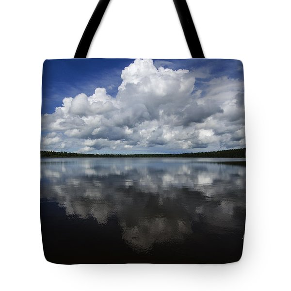 In The Good Old Summertime  Tote Bag by Bob Christopher