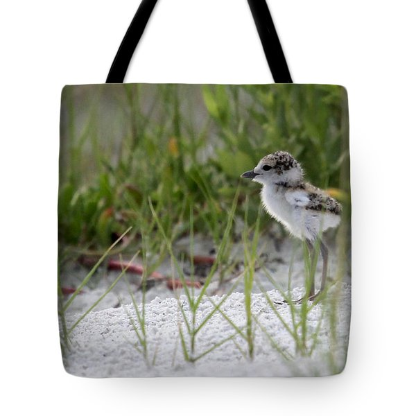 In The Grass - Wilson's Plover Chick Tote Bag
