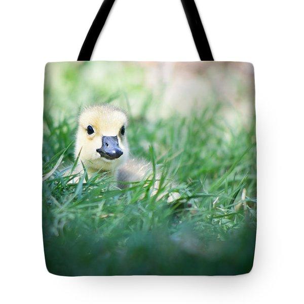 In The Grass Tote Bag by Priya Ghose