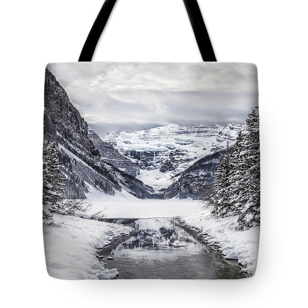 In The Heart Of The Winter Tote Bag