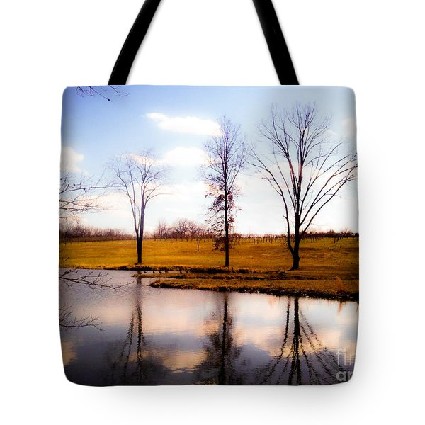In The Mood Tote Bag by Peggy Franz