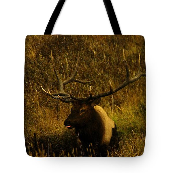 In The Mudhole Tote Bag by Jeff Swan