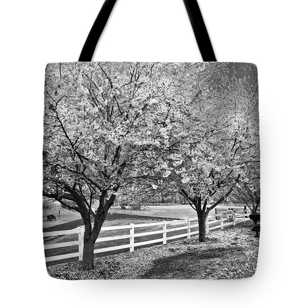 In The Park Tote Bag by Debra and Dave Vanderlaan