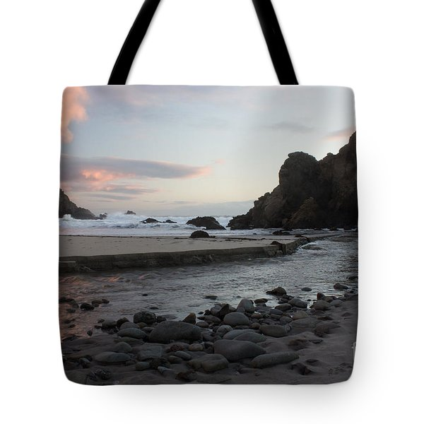 In The Pink Tote Bag by Suzanne Luft